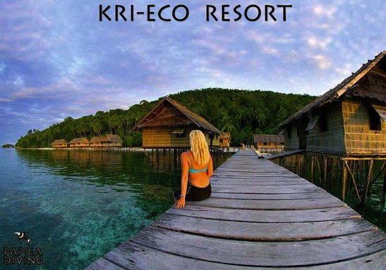 © copyright by Kri Eco Resort