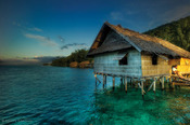 © copyright by Papua Diving