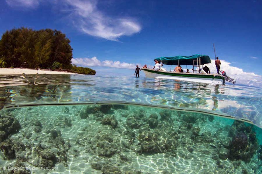 Papua diving resorts kri island raja ampat indonesia - Raja ampat dive resort ...